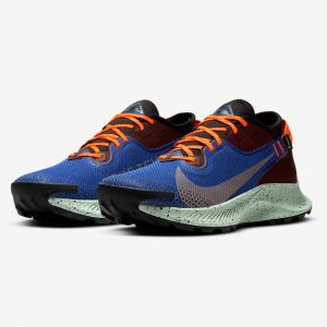 Nike Pegasus Trail 2 GORE-TEX Wanderschuhe Herren